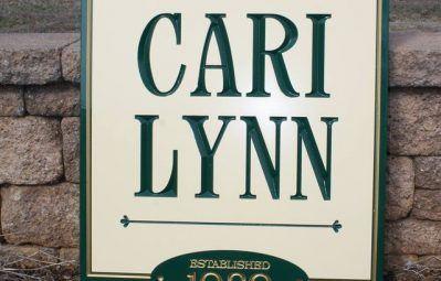 Cari Lynn imprinted cut lettering and custom sign shape